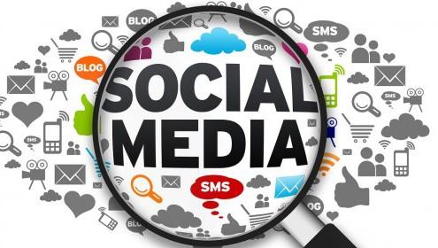 Social media focus - Pink Monkey Media